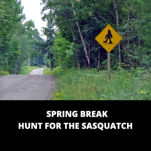 Spring Break Hunt for the Sasquatch